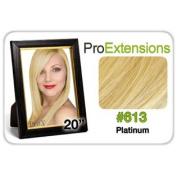 Pro Fusion 20. Number 613 Platinum Blonde